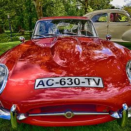 Jaguar by Marco Bertamé - Transportation Automobiles ( 3, jaguar, v, 0, t, red, 6, c, letter, a )