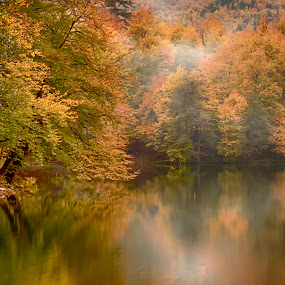 Yedigoller / Bolu / Turkey by Hale Yeşiloğlu - Landscapes Forests ( reflection, autumn, fall, lake, forest,  )