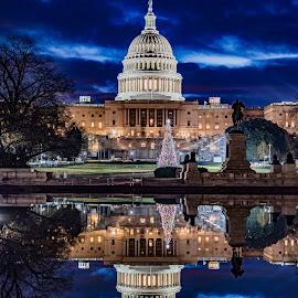 Washington DC - Capital Building Reflection 3:2 HDR 1/4/17 by Aric Ament - Buildings & Architecture Public & Historical ( #holidayseason, #xmas, #capitalbuilding, #twilight, #dc, #tree, #washingtondc, #sunrise, #christmastree, #landscape, #portrait, #longexposure, #reflections, #holiday, #photography )