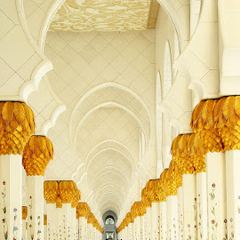 Sheikh Zayed Grand Mosque by Jenny Del Rio - Buildings & Architecture Places of Worship