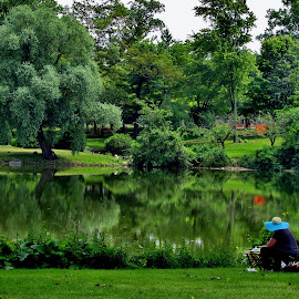 Taking It All In by Howard Sharper - People Street & Candids ( woman, candid, painting, landscape, park )