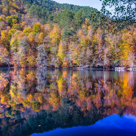 7Lakes in autumn by Arif Sarıyıldız - Landscapes Travel ( bolu, 7lakes, autumn leaves, autumn, lake, turkey )