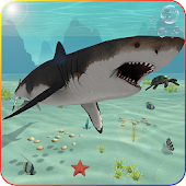 Download Full Hungry Shark Attack 1.0 APK