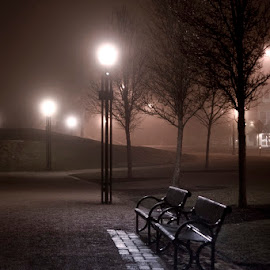 Solitude by Marie Browning - City,  Street & Park  Night ( lights, benches, park, trees, night )
