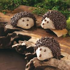 Chocolate-Pecan Layered Icebox Cookies Recipe | Yummly