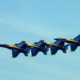 Blue Angels by Bill Telkamp - Transportation Airplanes ( airplanes, airplane, jet, blue angels, airshow )