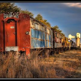 End of the line by Deborah Felmey - Transportation Trains ( rust, decay, abandoned, trains, train,  )