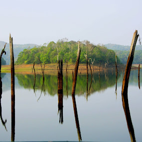 New Born by Umed Jadeja - Landscapes Waterscapes