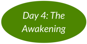 Day 4: The Awakening