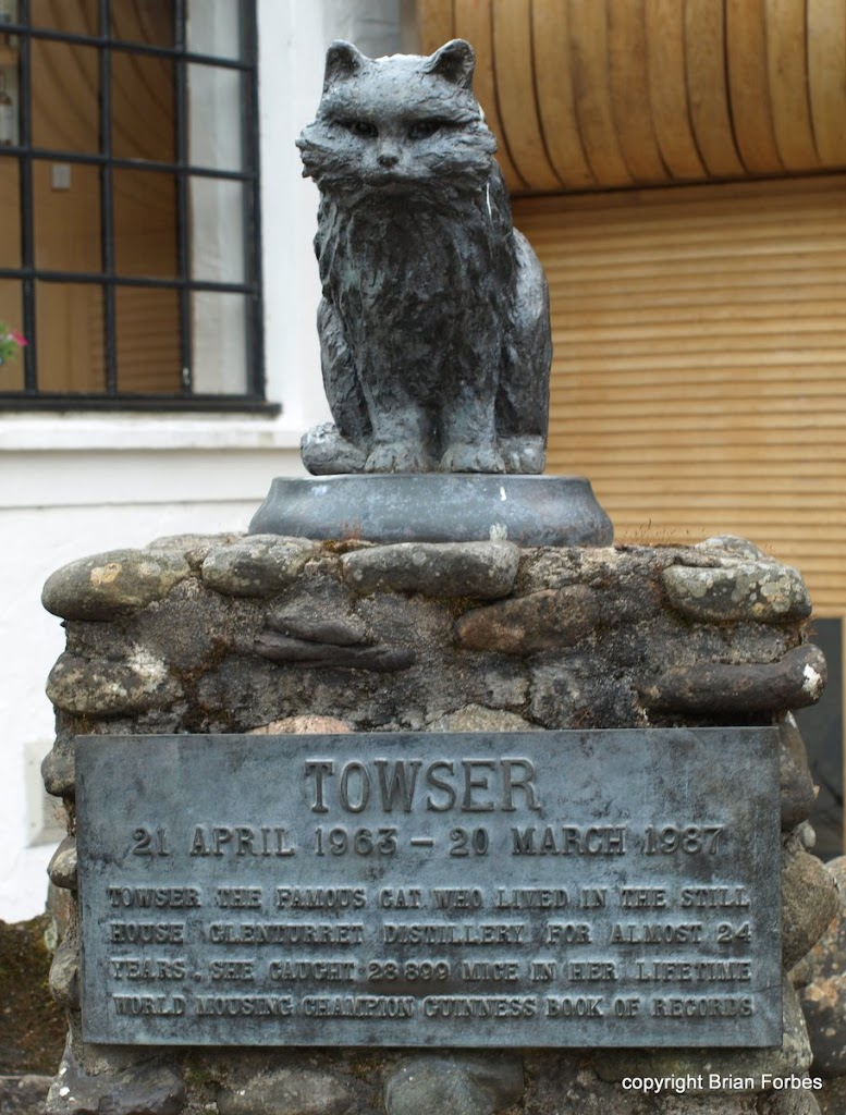 TOWSER 21 APRIL 1963 - 20 MARCH 1987 TOWSER THE FAMOUS CAT, WHO LIVED IN THE STILL HOUSE GLENTURRET DISTILLERY FOR ALMOST 24 YEARS, SHE CAUGHT 28,899 MICE IN HER LIFETIME WORLD FAMOUS MOUSING ...