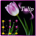 App Pink Tulip Beautiful Flower apk for kindle fire