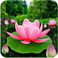 Flower Live Wallpaper 3D APK for Bluestacks