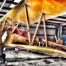 Boeing-Stearman by Lisa LaBelle - Instagram & Mobile Android ( hangar, stearman, wings, airplane, aircraft, boeing, bi-plane,  )
