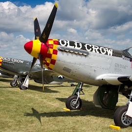 Mustangs by Patrick Barron - Transportation Airplanes ( mustang, p-51, eaa, oshkosh, airventure )