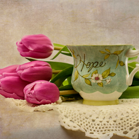 Hope by Jill Beim - Artistic Objects Cups, Plates & Utensils ( lace, texture, still life, pink, tulips, tea cup, flowers )