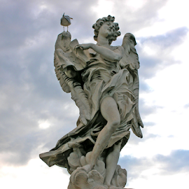 Angel with Seagull by Jane Spencer - Buildings & Architecture Statues & Monuments ( angel, sculpture, ancient, seagull, rome, statuary, vatican, italy )