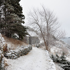 All One Has To Do Is Imagine by Harold Bradley - Artistic Objects Other Objects ( solitary, ocean water saltwater, home, winterscape, stone, sedate, coastl area, forest, seascape, house, landscape, refuge, winter, snow, shoreline, trees, stone wall, light snow )