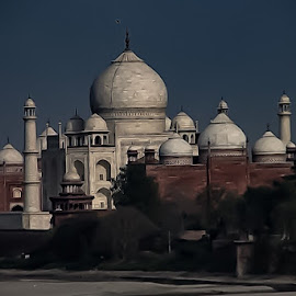 Taj Mahal - Clicked from Red Fort of Agra, India by Kumar Gowda - Buildings & Architecture Public & Historical