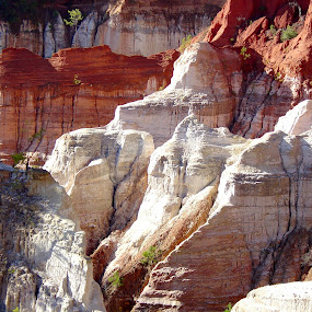 Providence Canyon State Park by Bill Bettilyon - Landscapes Deserts ( providence canyon state park, canyon, painted rock )