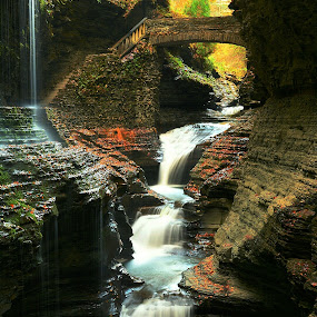 Fall Glen by Travis Houston - Landscapes Waterscapes (  )