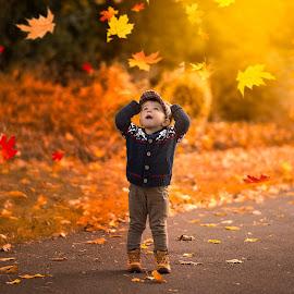 Autumn is here.... by Piotr Owczarzak - Babies & Children Children Candids ( park cute, england, london, colors, leaves, boy )