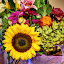 Composition of flowers by Marek Rosiński - Flowers Flower Arangements ( sunflower and other flowers, bouquet of flowers, bunch of flowers, flowers, composition of flowers )