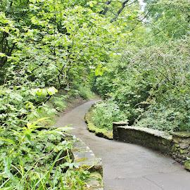 by Eloise Rawling - City,  Street & Park  Vistas ( leading lines, greens, bridge, trees, footpath )