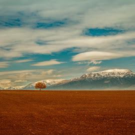 Bulgaria by Boris Tashkov - Uncategorized All Uncategorized ( landscape )