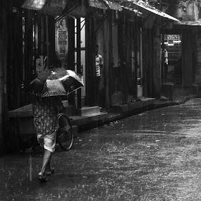 Rainbound by Rahat Amin - City,  Street & Park  Street Scenes ( black and white, street, candid, nikon, rain )