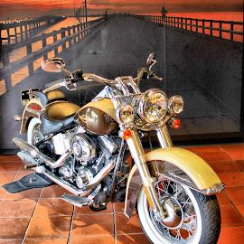 by Photo9981  XXX - Transportation Motorcycles