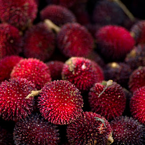 Pulasan by Mohamad Sa'at Haji Mokim - Food & Drink Fruits & Vegetables ( stock, pwcfruit, tropical, fruits, pulasan )