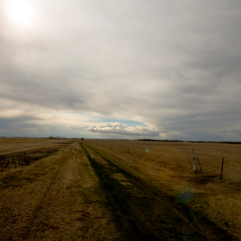 Roads to Nowhere by Janet Gilmour-Baker - Landscapes Prairies, Meadows & Fields ( clouds, pasture, saskatchewan, prairies, farmers fields, landscape, fields )