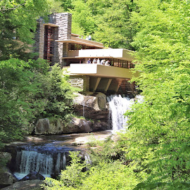 Falling Water by Michael Lunn - Buildings & Architecture Architectural Detail