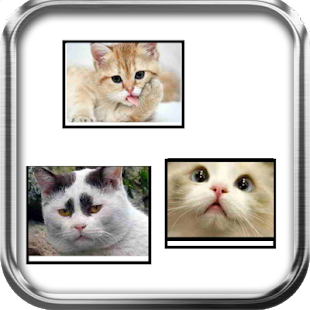 Funny Cats Puzzle Game - screenshot