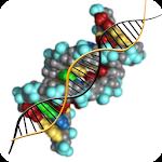Molecular genetics Icon
