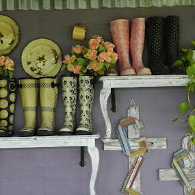 by Kirsty Wilkins - Novices Only Objects & Still Life ( the desert rose, farm stalls, western cape )