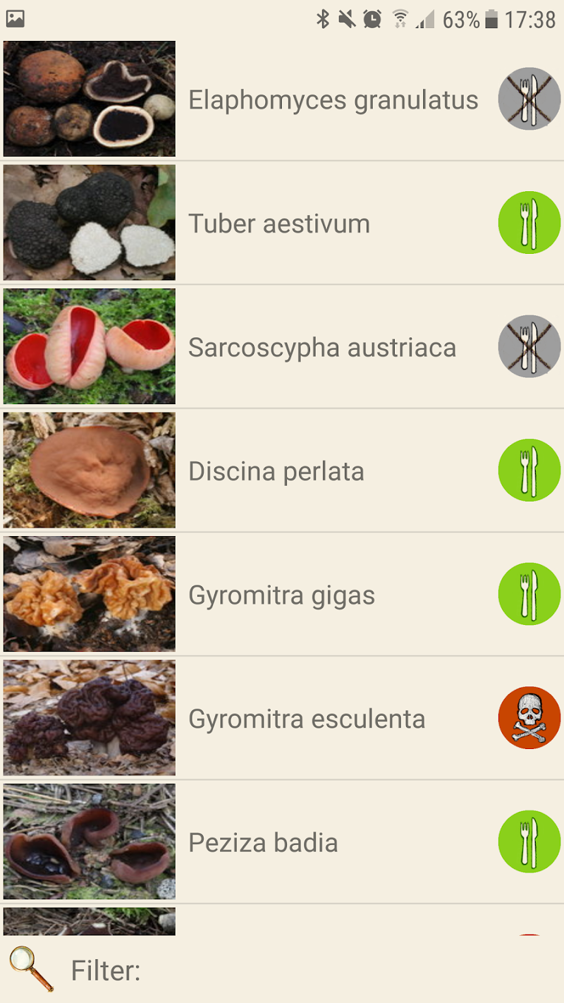 Mushrooms app Screenshot 4