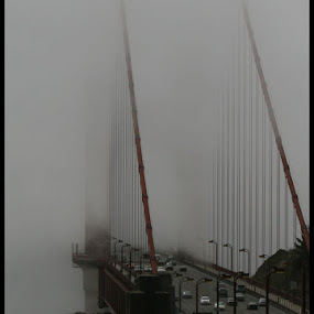 Golden Gate shrouded in fog by George Watson - Buildings & Architecture Bridges & Suspended Structures