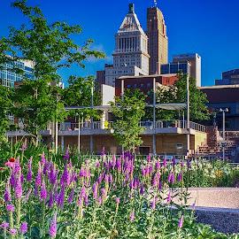 City Park by Richard Michael Lingo - City,  Street & Park  City Parks ( ohio, park, cincinnati, flowers, city )