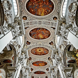 by Dragana Jankovic - Buildings & Architecture Places of Worship ( cathedral ceiling, buildings, architectural detail, cathedral, places of worship )