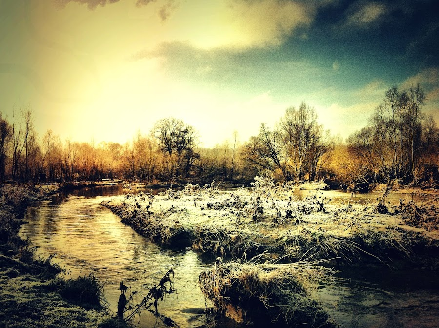 cold water by Diana Calvario - Instagram & Mobile iPhone ( water, iphoneography, winter, nature, iphoneographie )