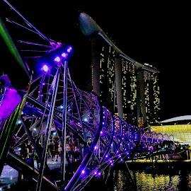 Helix Bridge, Singapore by Lye Danny - Buildings & Architecture Bridges & Suspended Structures