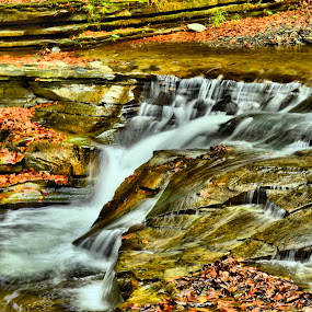 Waterfall at stony brook by Jim Davis - Landscapes Waterscapes ( oranges., water, reds, fall colors, raging water, water falls, stone, wet, autumn colors, stones, leaves, fallen leaves )