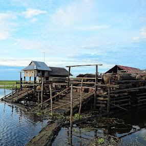 KALANG HADANGAN  by Adithya Perdana Putra - Landscapes Travel