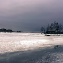 by Marko Paakkanen - Landscapes Weather ( water, ice, gray day, forest, lake, gray )