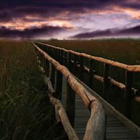 Mystical Path by Blanka Bareza - Landscapes Travel ( pwcpaths )