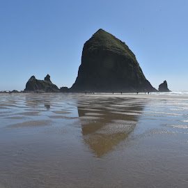Cannon Beach, Haystack Rock by Terry Oviatt - Novices Only Landscapes