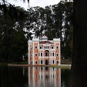 Castle in Chautla by Cristobal Garciaferro Rubio - Buildings & Architecture Public & Historical ( water, reflection, chautle, trees, reflections, castle, leaves )
