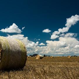 High Summer by Zeljko Vajak - Landscapes Prairies, Meadows & Fields ( clouds, field, hay, cloudscape, summer, harvest )