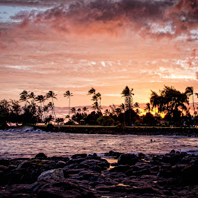 Kauai Sunset  by Chris Pugh - Landscapes Sunsets & Sunrises ( palm, kauai, sunset, ocean, beach, hawaii )